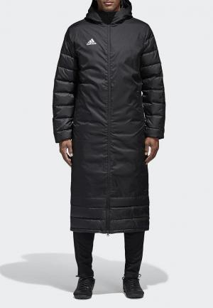 Пуховик adidas. Цвет: черный