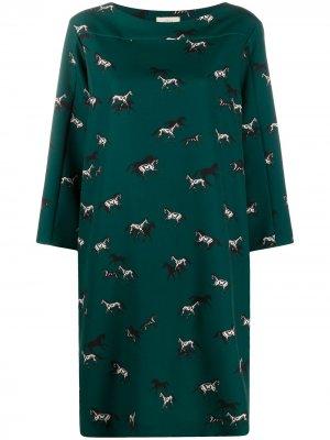 Платье миди с принтом Altea. Цвет: зеленый