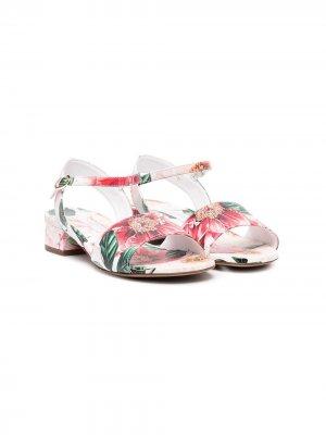 Босоножки с цветочным принтом Dolce & Gabbana Kids. Цвет: розовый