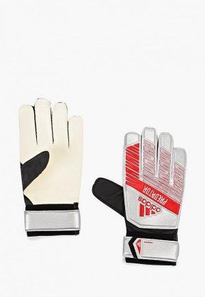 Перчатки вратарские adidas. Цвет: серебряный
