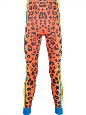 Тайтсы Leopard Walter Van Beirendonck. Цвет: оранжевый