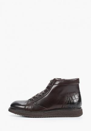 Ботинки Vera Victoria Vito. Цвет: коричневый