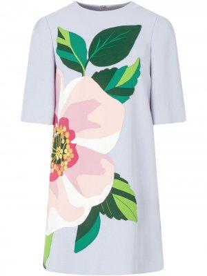 Платье мини с цветочной аппликацией Dolce & Gabbana. Цвет: b8966 powder голубой