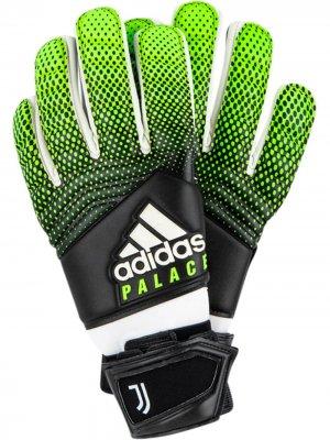 Вратарские перчатки Juventas Palace. Цвет: черный