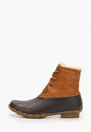 Ботинки Sperry Top-Sider. Цвет: коричневый