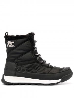 Непромокаемые ботинки Whitney SOREL. Цвет: черный