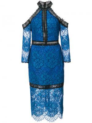 Кружевное платье миди Alexis. Цвет: синий