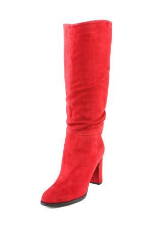 Сапоги ARGO. Цвет: бордовый