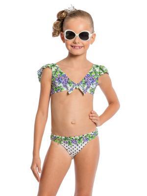 Купальник для девочек Arina Festivita. Цвет: зеленый, белый, фиолетовый