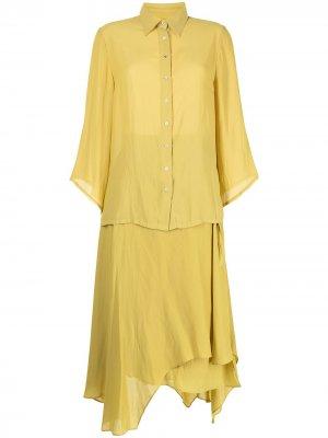 Комплект из юбки и рубашки Baruni. Цвет: желтый
