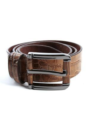 Ремень Franco Frego. Цвет: коричневый