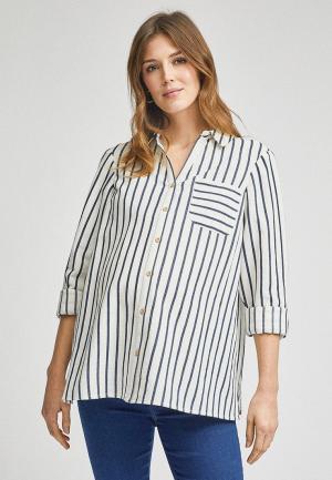 Рубашка Dorothy Perkins Maternity. Цвет: белый