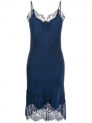 Кружевное платье-комбинация Gold Hawk. Цвет: синий