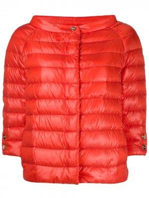 Куртка-пуховик Herno. Цвет: оранжевый