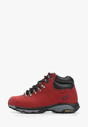 Ботинки Ascot. Цвет: бордовый
