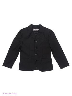 Пиджак Born. Цвет: черный, серый