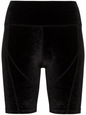 Облегающие шорты Danielle Guizio. Цвет: черный