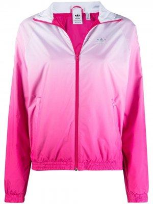 Куртка с эффектом градиента и логотипом adidas. Цвет: розовый