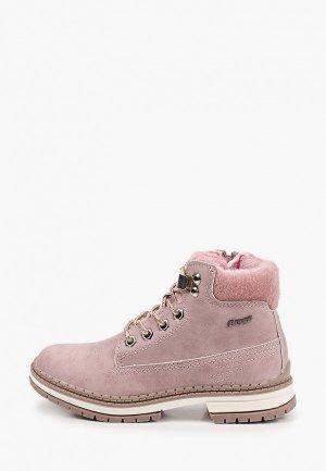Ботинки Beppi. Цвет: розовый
