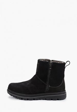 Ботинки Shoiberg. Цвет: черный