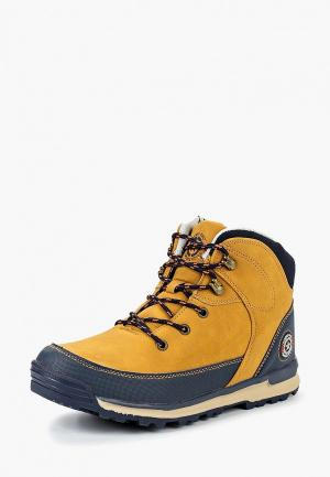 Ботинки Beppi. Цвет: коричневый