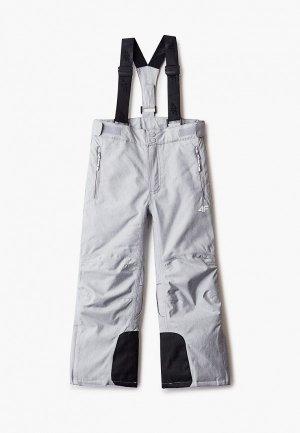 Брюки горнолыжные 4F. Цвет: серый