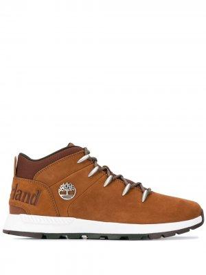 Ботинки Sprint Trekker на шнуровке Timberland. Цвет: коричневый