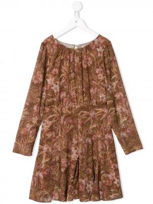 Платье Novah с принтом MARCHESA NOTTE MINI. Цвет: коричневый