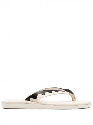 Вьетнамки Ammos с узором зигзаг Ancient Greek Sandals. Цвет: белый