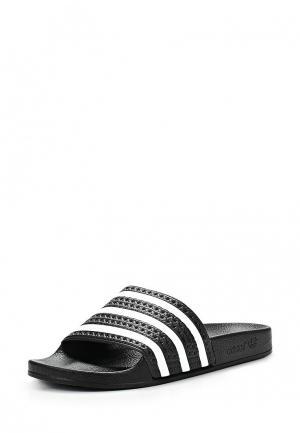 Сланцы adidas Originals. Цвет: черный